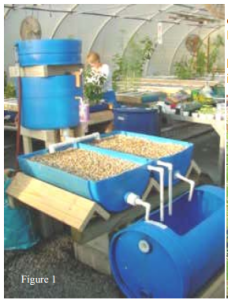 baril aquaponique