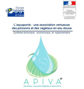 Ebook Apiva