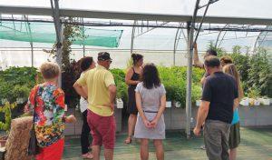 visite-formation-serre-ferme-aquaponie