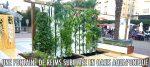Ils transforment une fontaine de Reims en fontaine comestible grâce à l'aquaponie