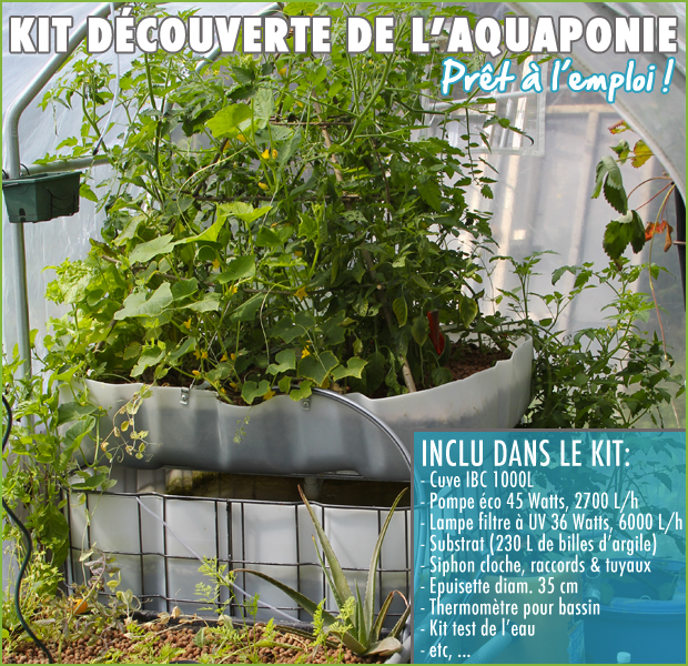 kit-aquaponie-pack1