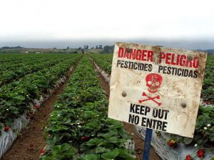 pesticides-danger