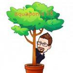 Illustration du profil de Tanquerel remi